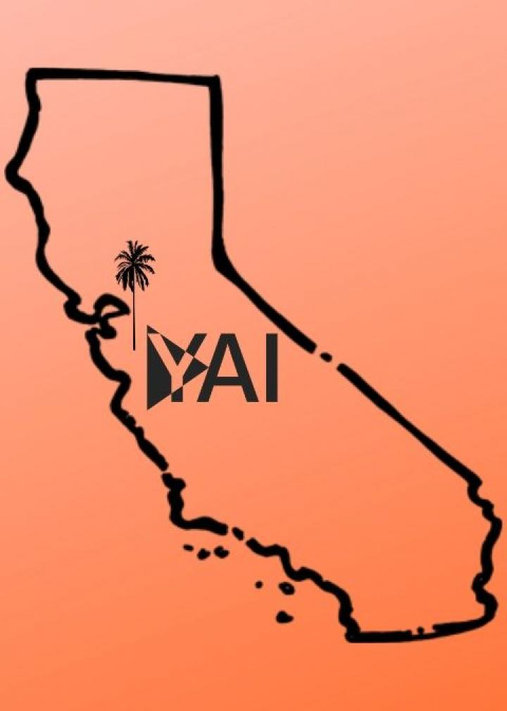 simple black outline of the state of California with a palm tree and YAI logo, on a red background